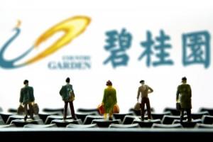再现架构调整碧桂园广东11区公司变3区多区域总降为副总