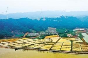 土地制度改革怎么激活新动能